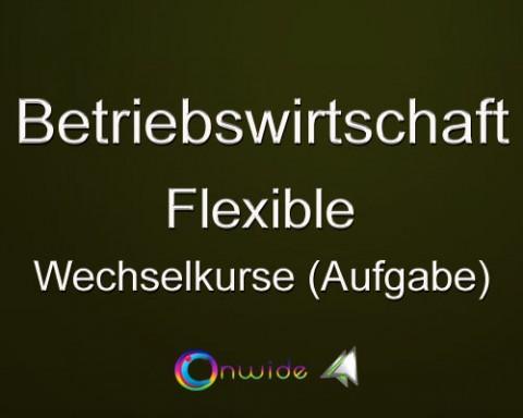Flexible Wechselkurse, Aufgabe