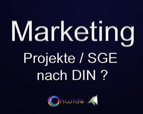 Projektmanagement, SGE, Projektaufbau